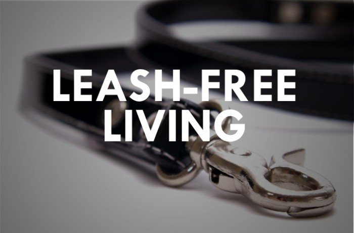 Leash-Free Living